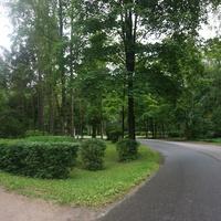 Парк Политежнического университета.