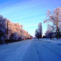 Мокроус. Зимнее утро на улице Энгельса.