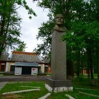 Бюст В.И Ленину перед иузеем