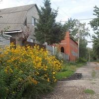 Улица Плеханова.