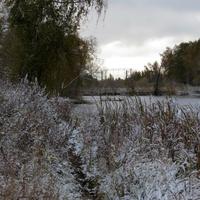 Пруд на речке Гвоздянка