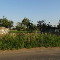 Сады в Московской Славянке
