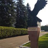 Памятник Сокол