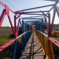 Пішохідний міст через Тясмин, село Березняки