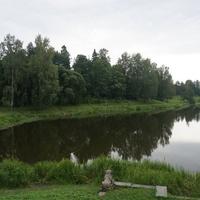 Природа в Павловске.Берег реки Славянка.