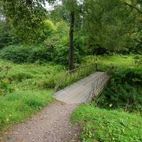 Природа Павловска.В парке Мариенталь.Пешеходный мостик.