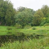 Природа города Павловск.В парке Мариенталь.