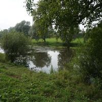 Природа Павловска.Река Славянка.