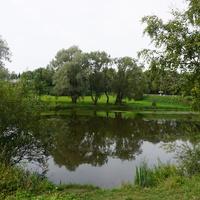 Природа Павловска.В парке Мариенталь.
