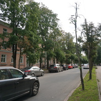 Павловск.Берёзовая улица
