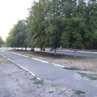 Улица Константина Гасиева.