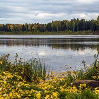 Аленушкин пруд в с. Рябово Зуевского района