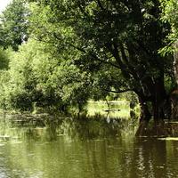 Речка Городенка в Малино