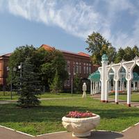 Гимназия. Чистополь