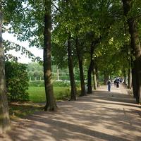 В Екатерининском парке.Проходные дорожки.