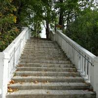 Волхов. Лестница от реки Волхов