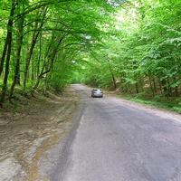 Дорога до Бурякового з боку Чигирина.