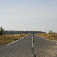 Около станции Шкинь, дорога на Малино, Коломну