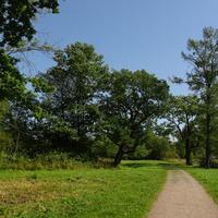 Баболовский парк