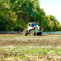 Осенние полевые работы