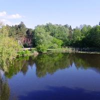 Річка Бовтишка,нижче греблі ставка