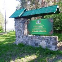 Бірківське лісництво