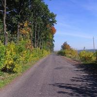Дорога до Залевок