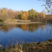 Район ЖД ст. Новый Петергоф.Безымянный водоём.