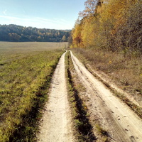 Дорога в деревню Федьково
