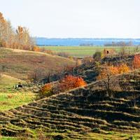 село Большая Поляна