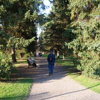 В Александрийском парке.