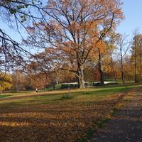 В парке Александрия.