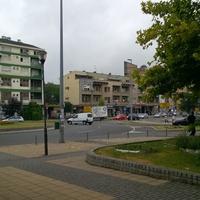 Град Лозница