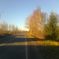 В деревне Гавриловская