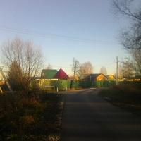В деревне Воронинская
