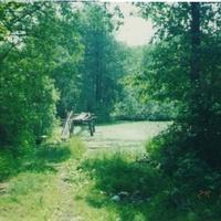 Мостик в селе Шатур. Июнь 2006г.