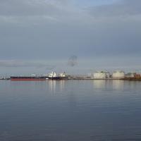 залив Невская Губа