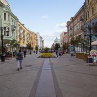 Пешеходная ул. Ленинградская