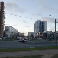 На Коломяжском проспекте.