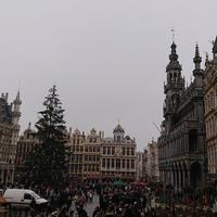 Брюссель, рыночная площадь и Дом Короля