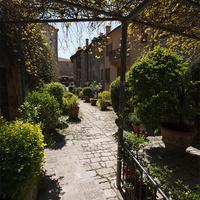 Зеленая улочка города