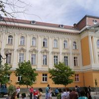 Закарпатский венгерский институт