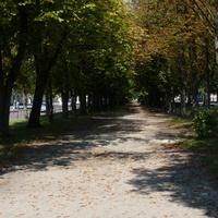 Пешеходная дорожка на бульваре 50-летия Победы