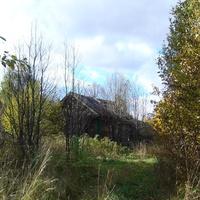 Деревня Алёшино (нежилая)