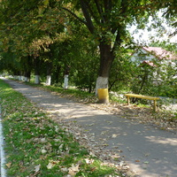 Пешеходная дорожка на улице города