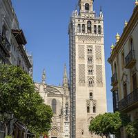 Кафедральный собор Санта-Мария-де-ла-Седе