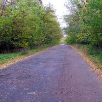 Дорога до Плескачівки