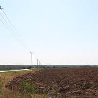 Поле около села Бортниково