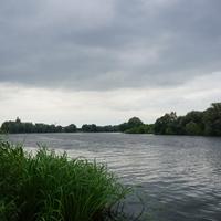 Река Москва в месте впадения реки Кожурновка