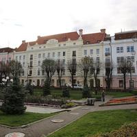 Буковинский Медицинский Университет